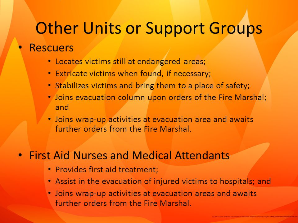 Other Units or Support Groups
