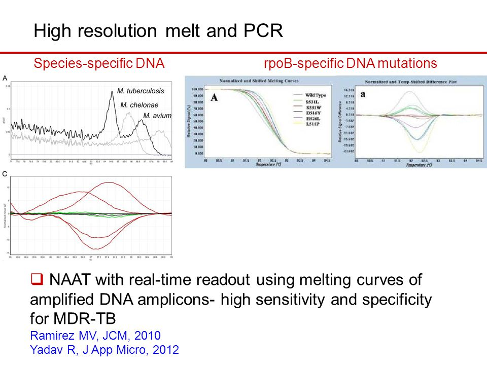 High resolution melt and PCR