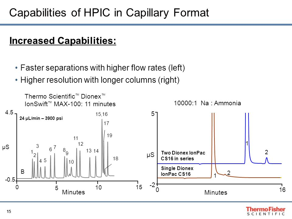 Capabilities of HPIC in Capillary Format
