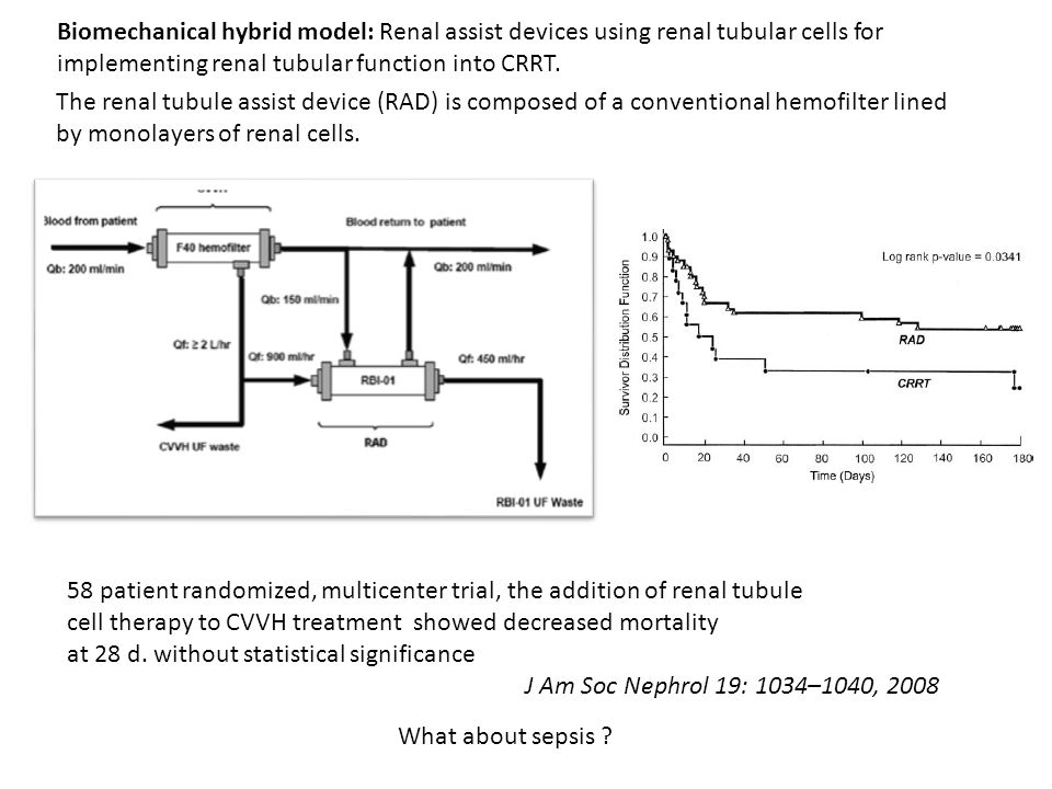 Biomechanical hybrid model: Renal assist devices using renal tubular cells for implementing renal tubular function into CRRT.