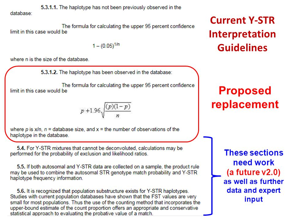 Current Y-STR Interpretation Guidelines