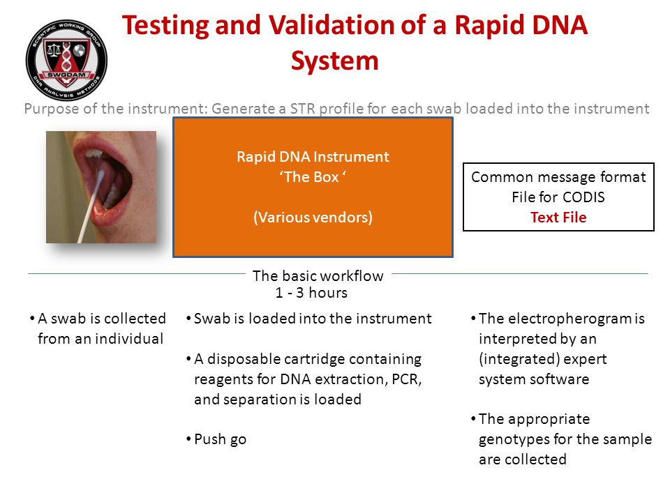 Testing and Validation of a Rapid DNA System