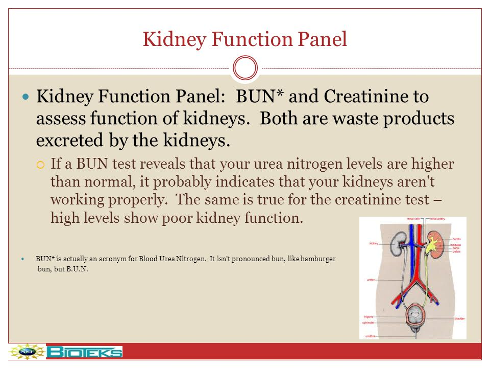 Kidney Function Panel Kidney Function Panel: BUN* and Creatinine to assess function of kidneys. Both are waste products excreted by the kidneys.