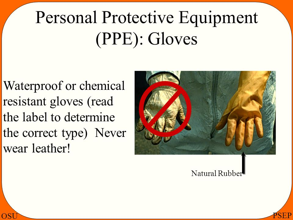 Personal Protective Equipment (PPE): Gloves