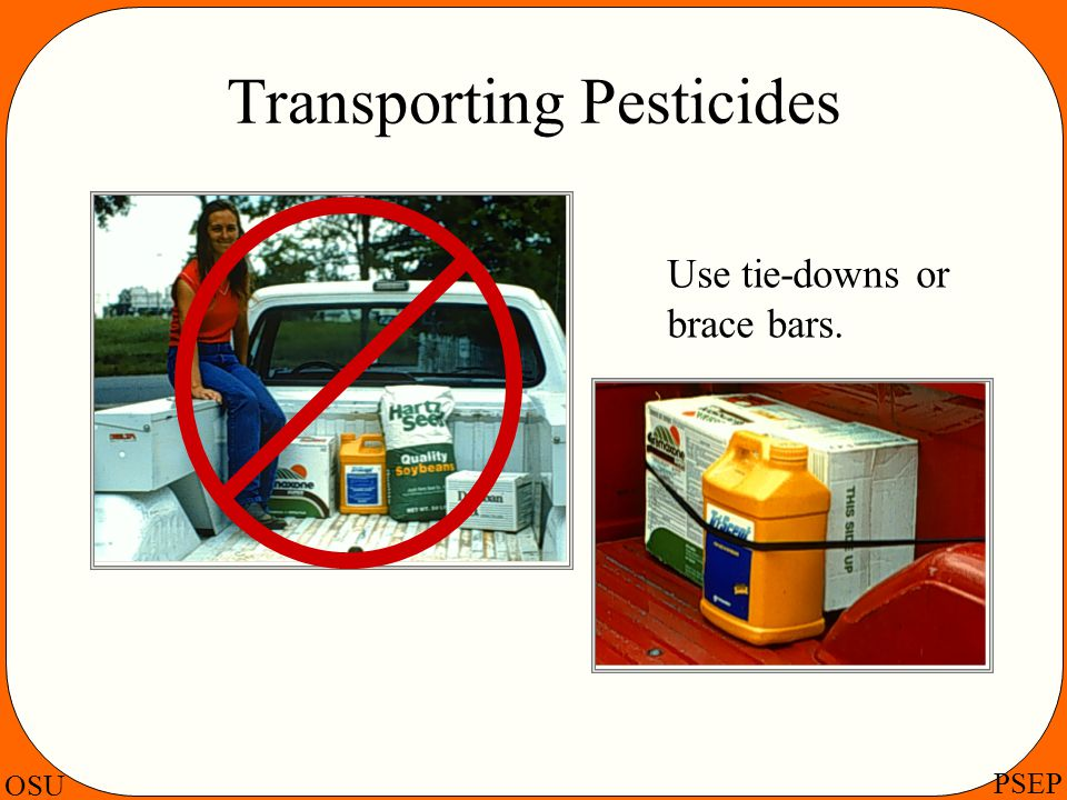 Transporting Pesticides