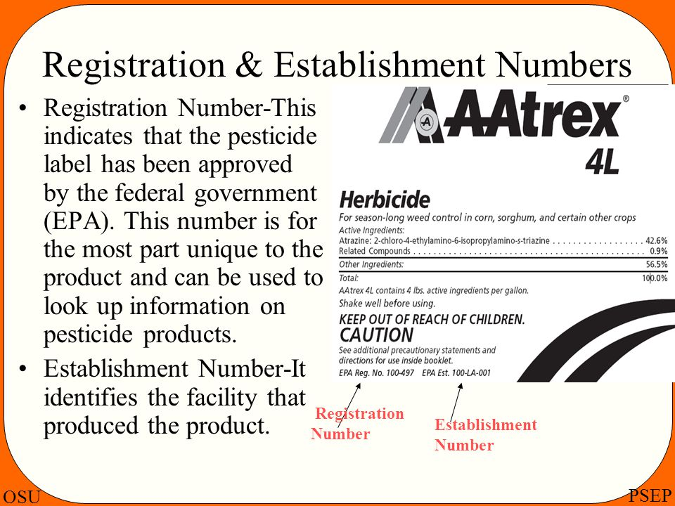 Registration & Establishment Numbers