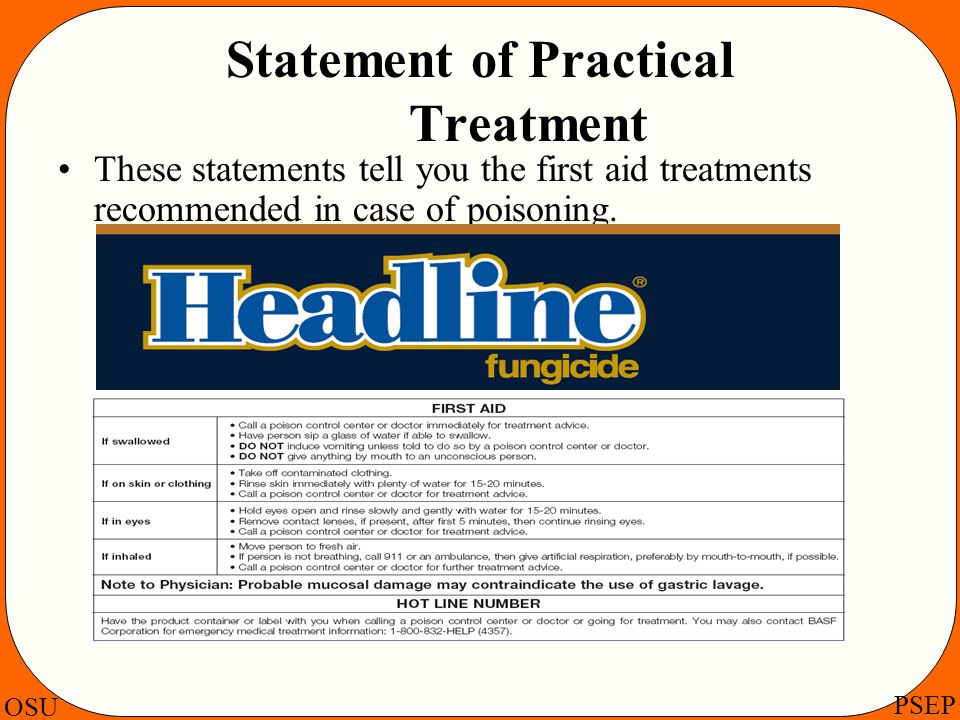 Statement of Practical Treatment