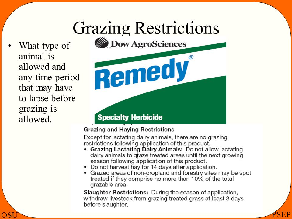 Grazing Restrictions What type of animal is allowed and any time period that may have to lapse before grazing is allowed.