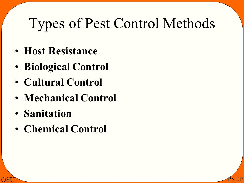 Types of Pest Control Methods
