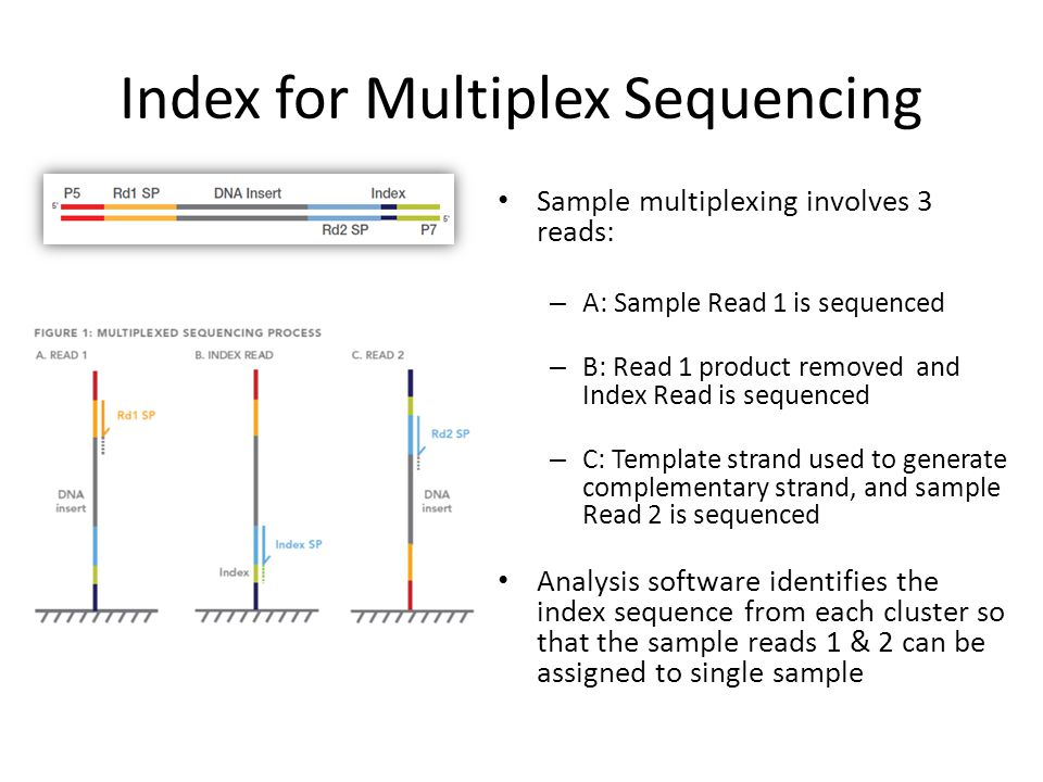 Index for Multiplex Sequencing