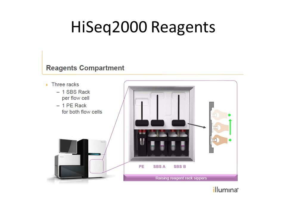 HiSeq2000 Reagents
