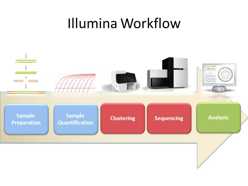 Illumina Workflow Analysis Clustering Sequencing Analysis Sample