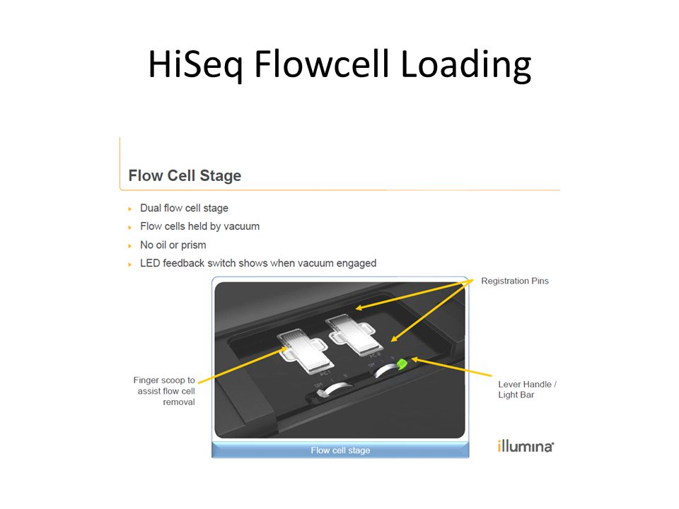 HiSeq Flowcell Loading