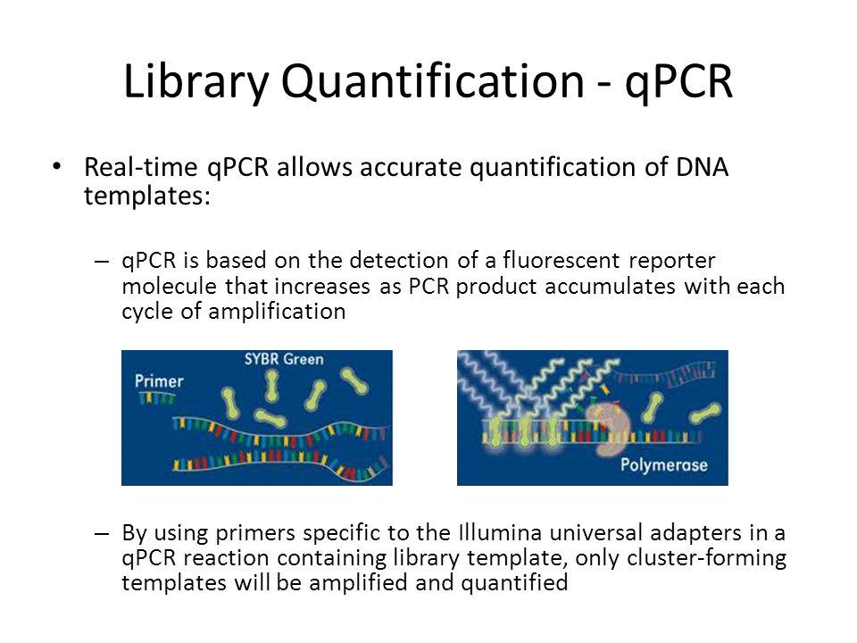Library Quantification - qPCR