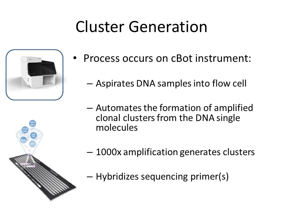 Cluster Generation Process occurs on cBot instrument: