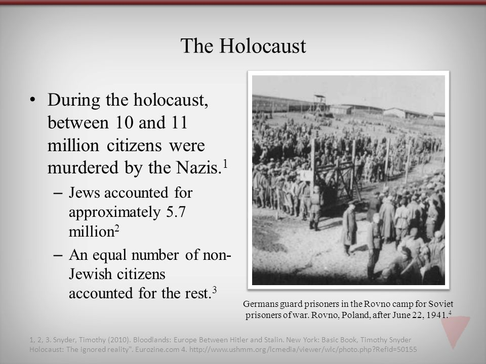 The Holocaust During the holocaust, between 10 and 11 million citizens were murdered by the Nazis.1.