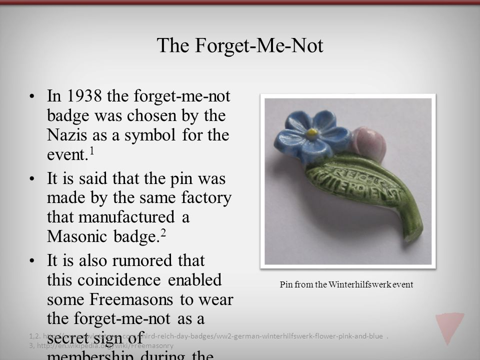 The Forget-Me-Not In 1938 the forget-me-not badge was chosen by the Nazis as a symbol for the event.1.