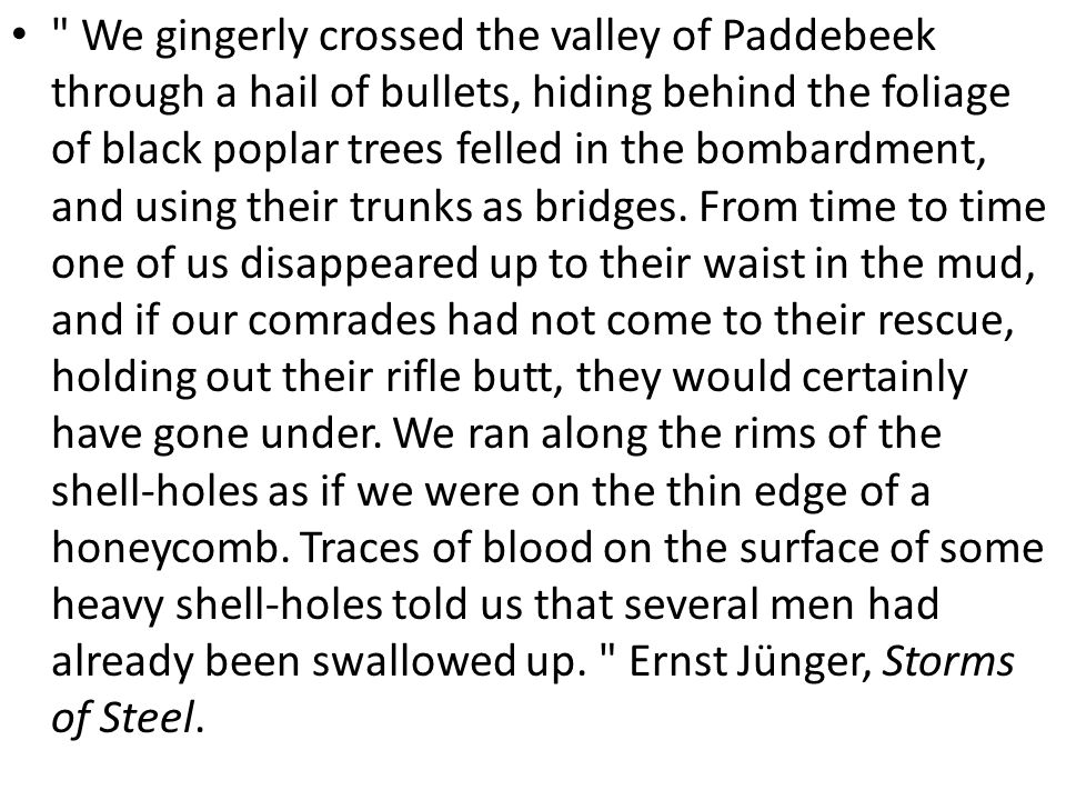 We gingerly crossed the valley of Paddebeek through a hail of bullets, hiding behind the foliage of black poplar trees felled in the bombardment, and using their trunks as bridges.