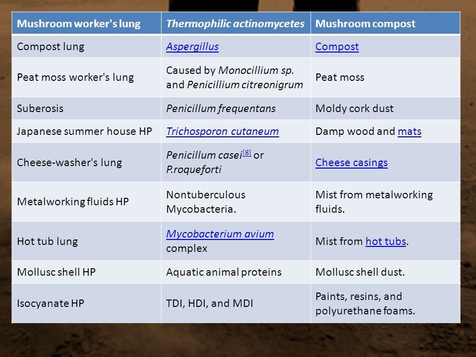 Mushroom worker s lung Thermophilic actinomycetes. Mushroom compost. Compost lung. Aspergillus. Compost.