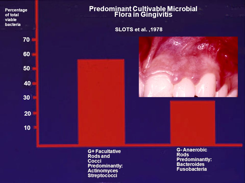 Predominant Cultivable Microbial Flora in Gingivitis
