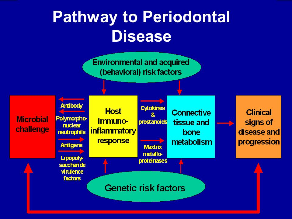 Pathway to Periodontal Disease