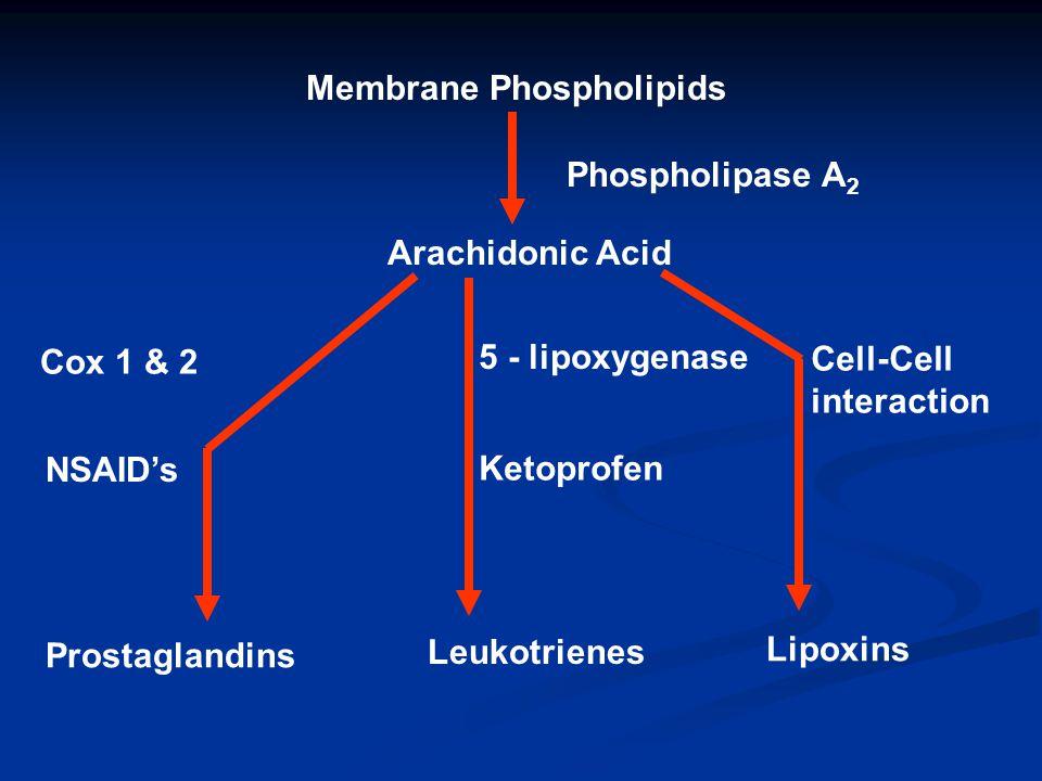 Membrane Phospholipids