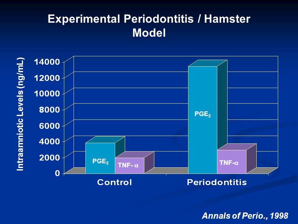 Experimental Periodontitis / Hamster Model