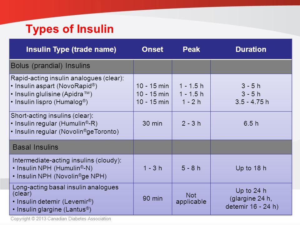 Insulin Type (trade name)
