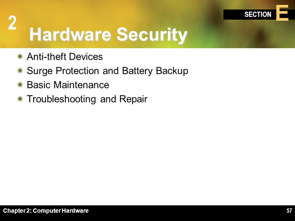 Hardware Security Anti-theft Devices