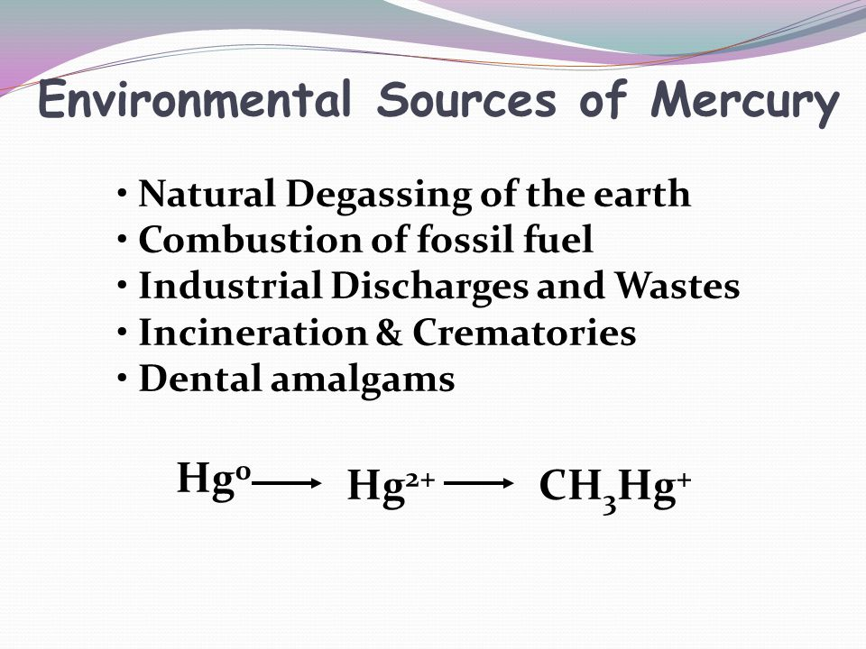 Environmental Sources of Mercury