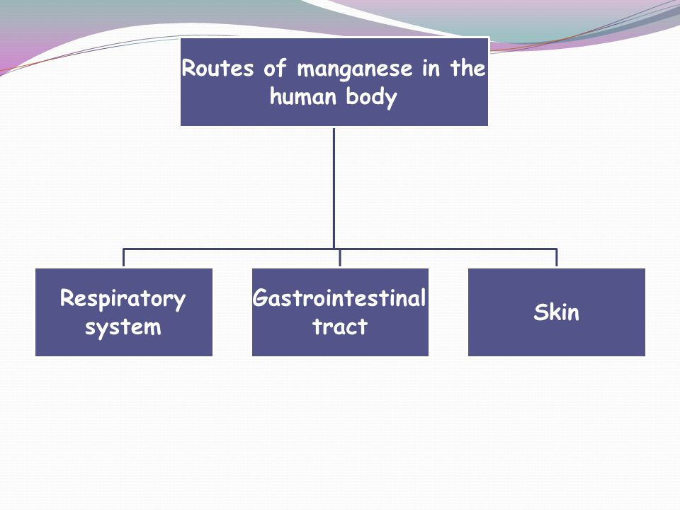Routes of manganese in the human body Gastrointestinal tract