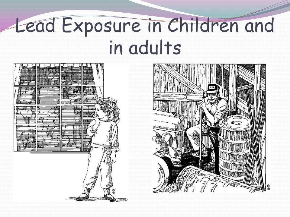 Lead Exposure in Children and in adults