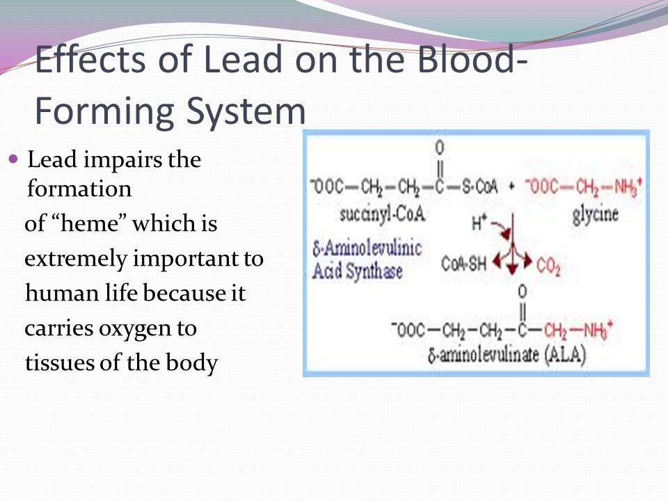 Effects of Lead on the Blood-Forming System