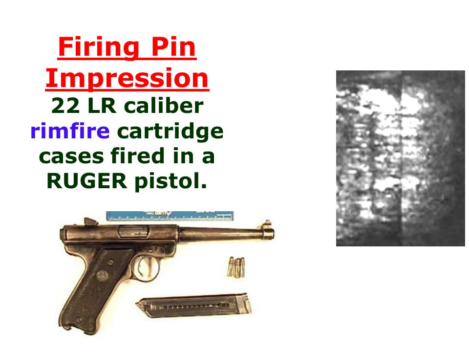 Firing Pin Impression 22 LR caliber rimfire cartridge cases fired in a RUGER pistol.
