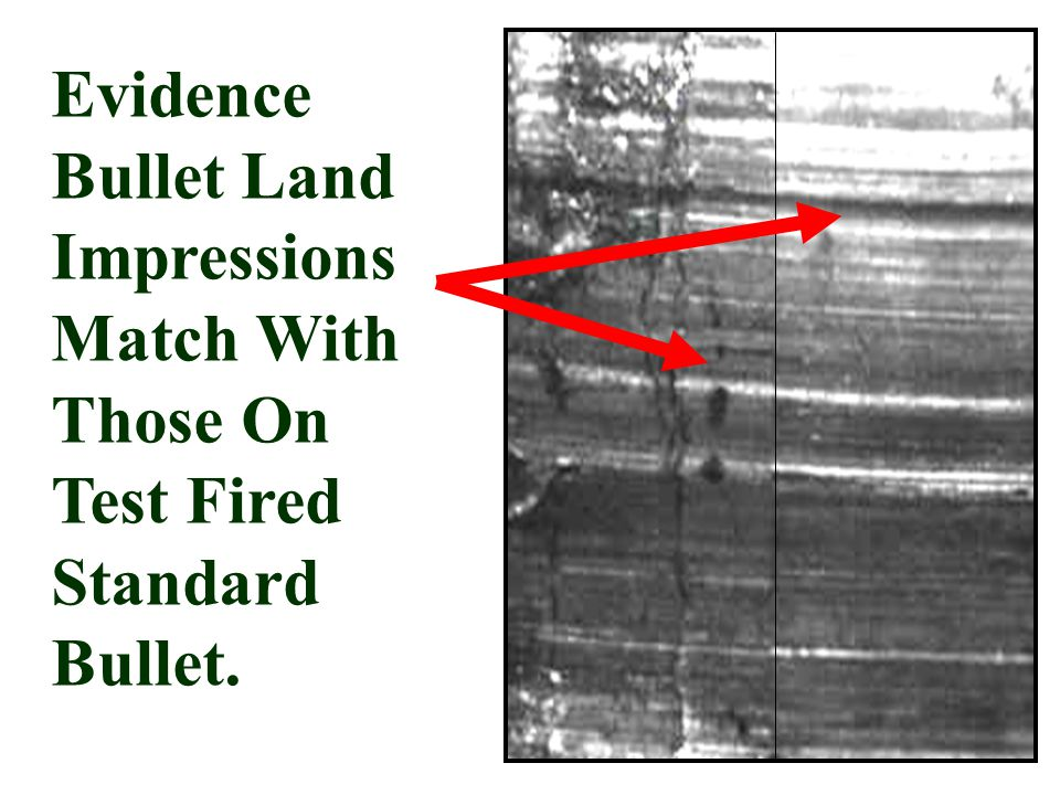 Evidence Bullet Land Impressions Match With Those On Test Fired Standard Bullet.
