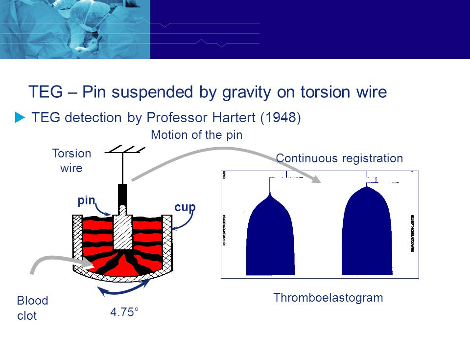 TEG – Pin suspended by gravity on torsion wire