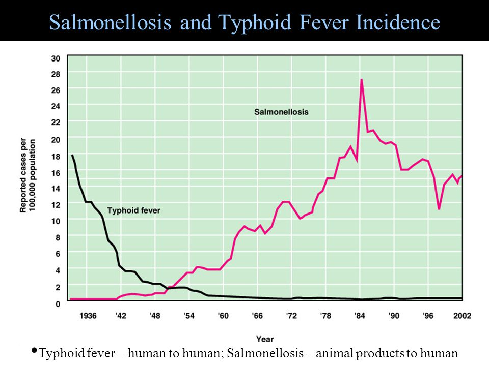 Salmonellosis and Typhoid Fever Incidence