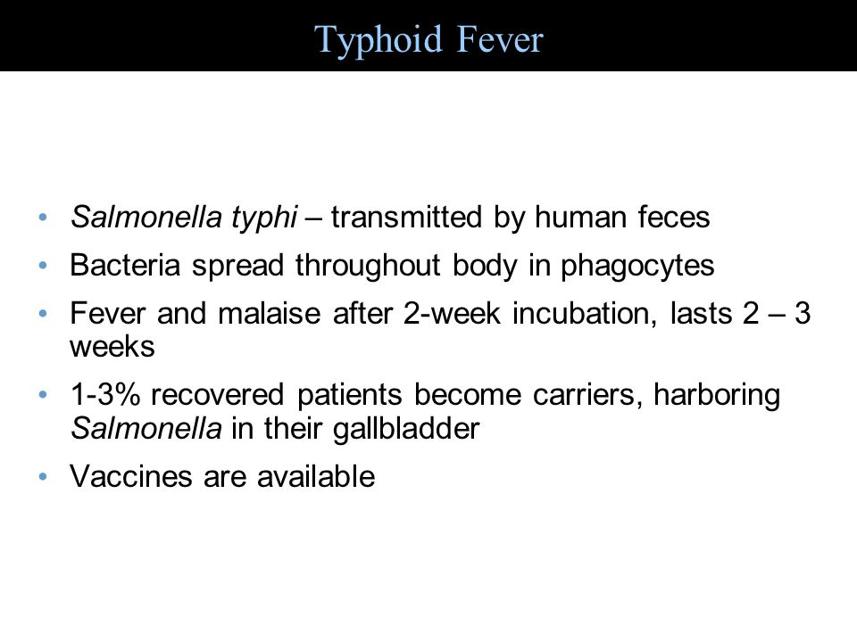 Typhoid Fever Salmonella typhi – transmitted by human feces