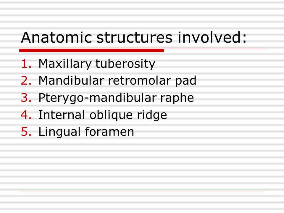 Anatomic structures involved:
