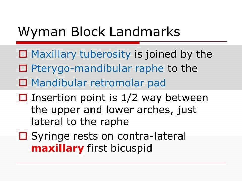 Wyman Block Landmarks Maxillary tuberosity is joined by the