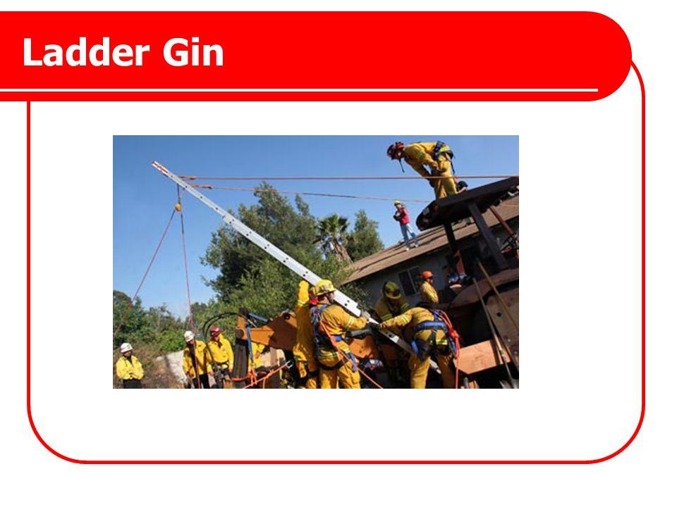 Ladder Gin