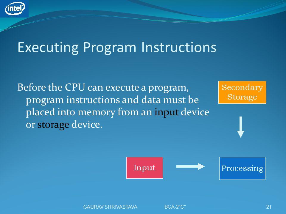 Executing Program Instructions