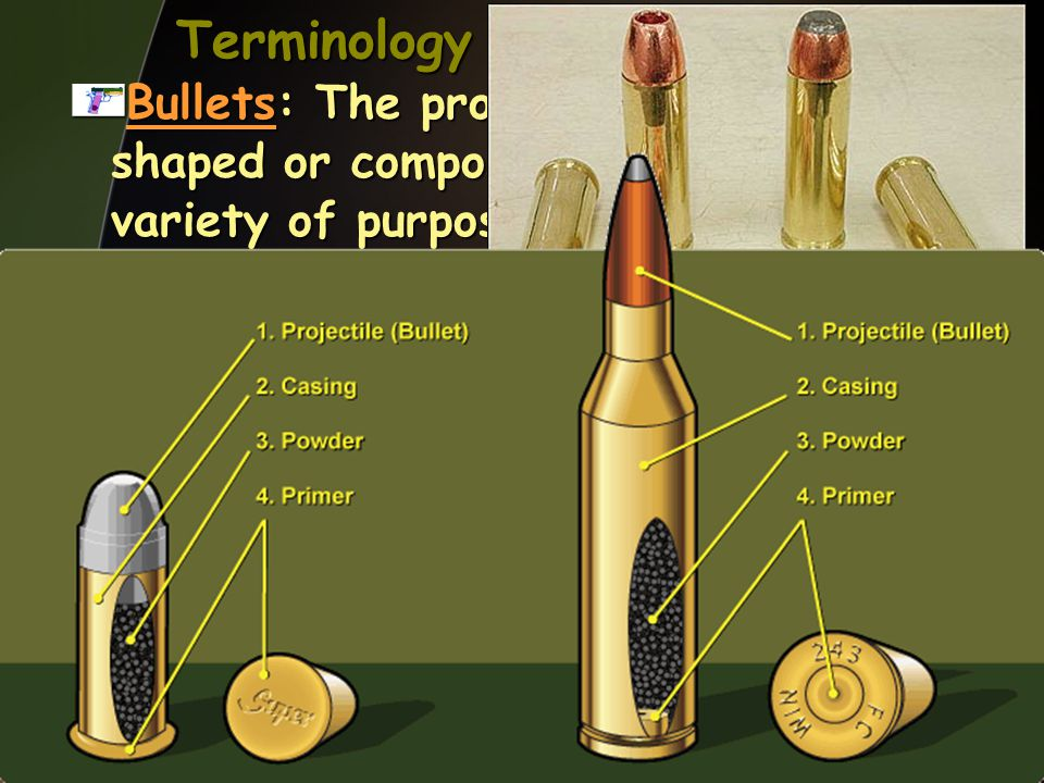 Terminology Bullets: The projectile. They are shaped or composed differently for a variety of purposes.