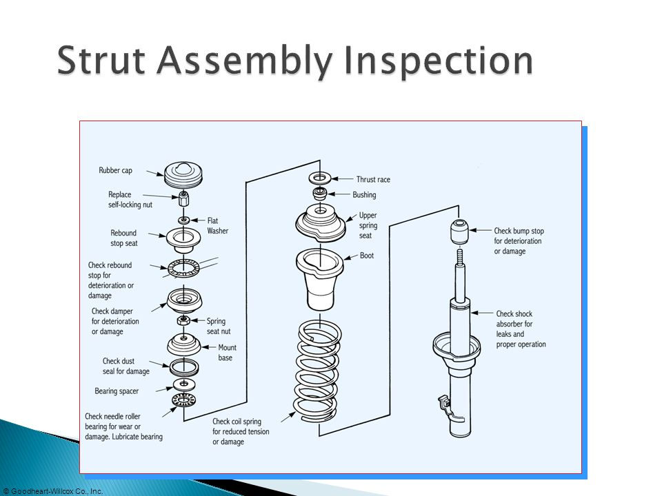 Strut Assembly Inspection