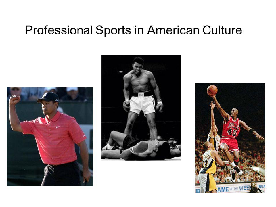 Professional Sports in American Culture
