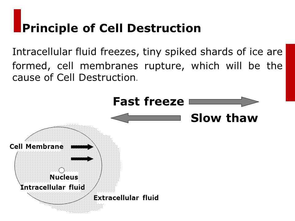 Principle of Cell Destruction