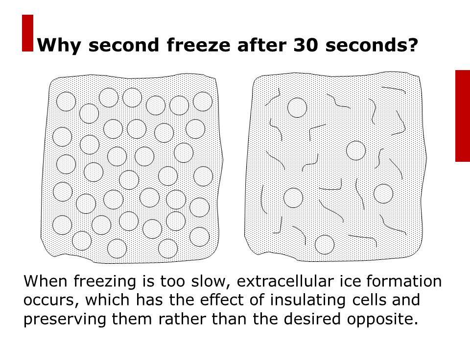Why second freeze after 30 seconds