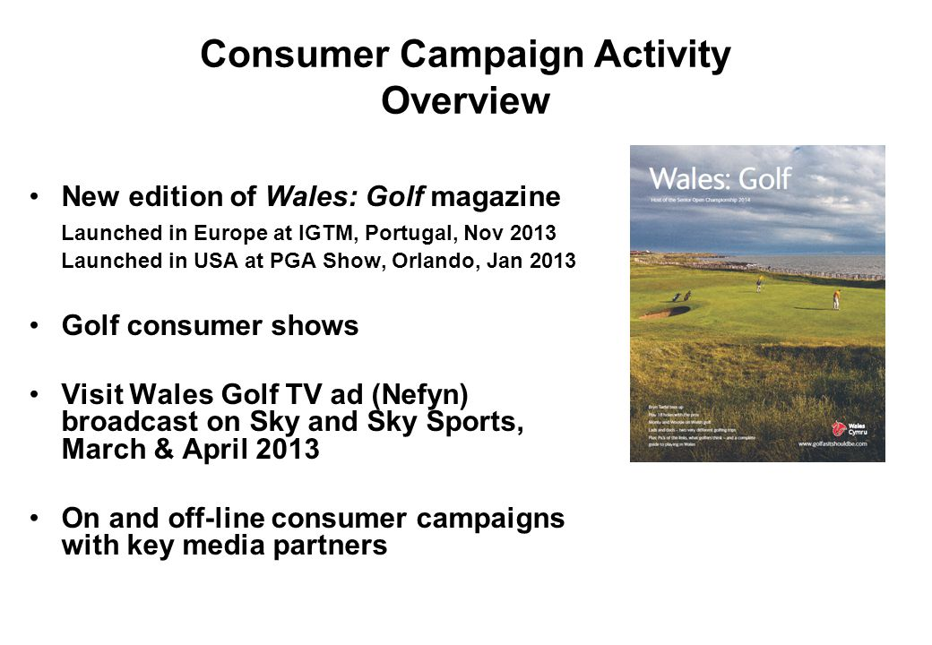 Consumer Campaign Activity Overview