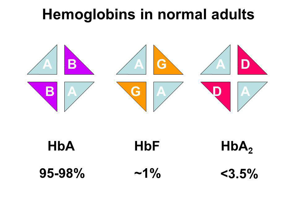 Hemoglobins in normal adults