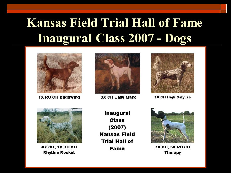 Kansas Field Trial Hall of Fame Inaugural Class 2007 - Dogs